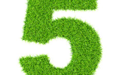 Grass number 1 (five) - ecology eco friendly concept character type