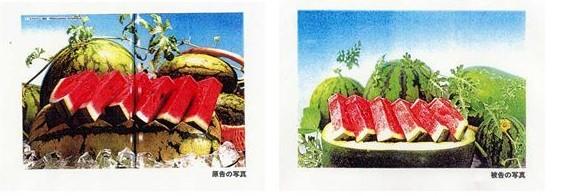 東京地判決平成11年12月15日(第1審)・東京高判平成13年6月21日(控訴審)